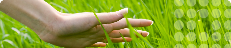 Image of Hand in Grass